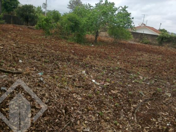 Lote/terreno à venda no bairro Campestre, em Lajeado
