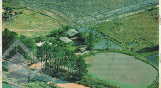 Chácara/sítio à venda no bairro Camaquã, em Camaquã