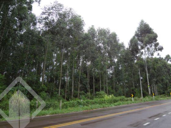 Sitio à venda em Picada, Marques De Souza - RS