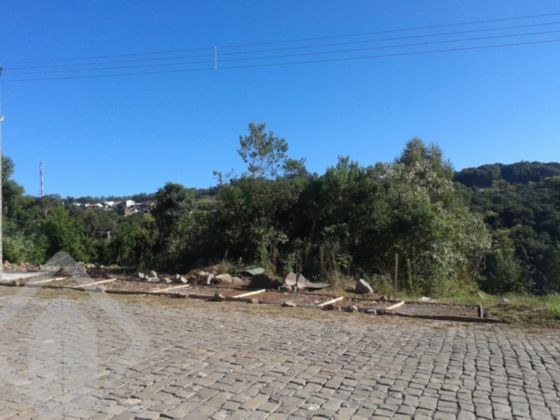 Lote/terreno à venda no bairro Loteamento San Marino, em Bento Gonçalves
