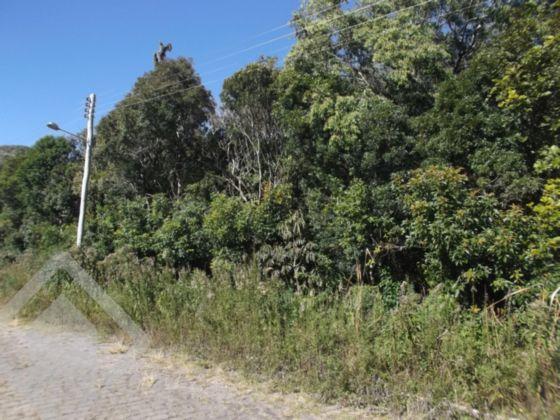 Terreno à venda em Alpes Verdes, Canela - RS