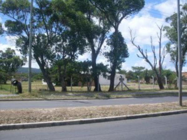 Lote/terreno para alugar no bairro Restinga, em Porto Alegre