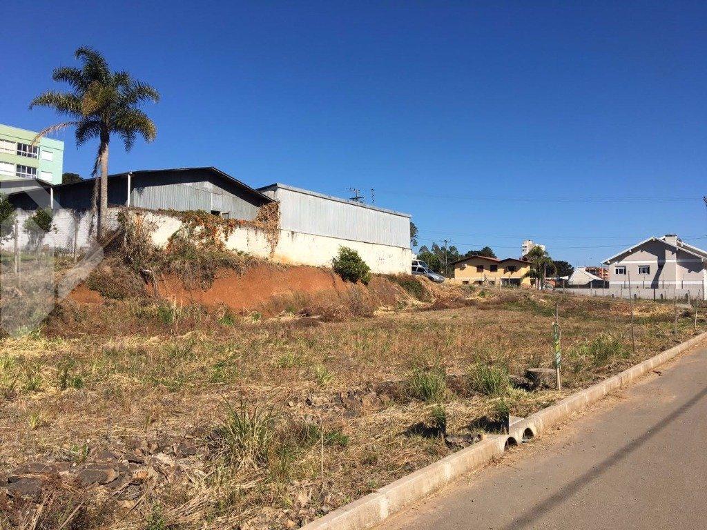 Lote/terreno à venda no bairro Universitário, em Bento Gonçalves