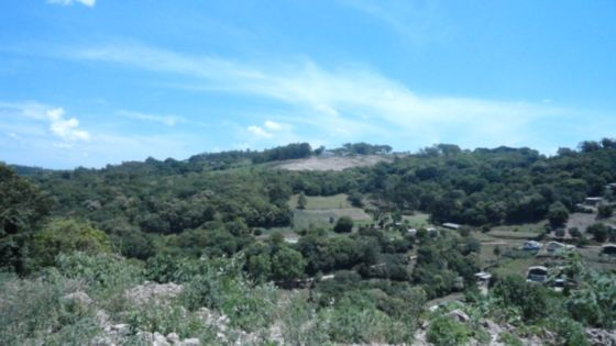 Lote/terreno à venda no bairro Kayser, em Caxias do Sul